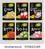 set of colorful labels  sketch... | Shutterstock .eps vector #555832189