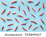 flat lay red chili peppers... | Shutterstock . vector #555849427