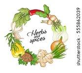 vector vegetable circle wreath... | Shutterstock .eps vector #555862039
