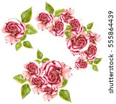 red roses with green leaves... | Shutterstock . vector #555864439