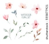watercolor floral set. | Shutterstock . vector #555877921