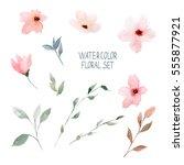watercolor floral set.   Shutterstock . vector #555877921