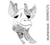 doodle giraffe illustration on... | Shutterstock .eps vector #555907171