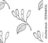 clove pattern   Shutterstock .eps vector #555968431