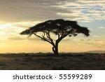 African Savanna Landscape At...