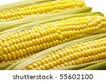 close up of three ears of corn  ... | Shutterstock . vector #55602100