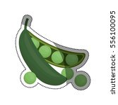 fresh peas vegetable icon... | Shutterstock .eps vector #556100095