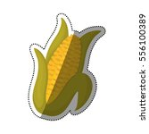 fresh corn vegetable icon... | Shutterstock .eps vector #556100389