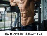 muscular torso of shirtless man ... | Shutterstock . vector #556104505