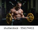 brutal strong athletic men... | Shutterstock . vector #556174411
