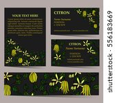 tropical card set for different ... | Shutterstock .eps vector #556183669