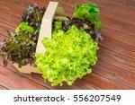 vegetable salad on wooden table | Shutterstock . vector #556207549