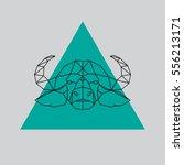 buffalo head geometric lines...   Shutterstock .eps vector #556213171