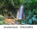 St. Lucia Botanical Gardens ...