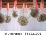 flower ball hangs from wooden... | Shutterstock . vector #556221001