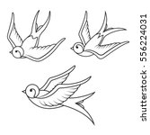 set of swallow tattoo templates ... | Shutterstock .eps vector #556224031
