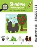 shadow matching game by finding ... | Shutterstock .eps vector #556233331