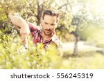 hedge trimming works in a... | Shutterstock . vector #556245319