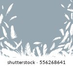 Background With Bird Feathers.
