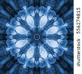 Monochromatic Blue Fractal...