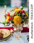 exotic fruits and a flowers at...   Shutterstock . vector #556311109