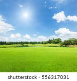 Field Of Green Grass And Blue...