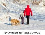 petropavlovsk  kazakhstan ... | Shutterstock . vector #556329931