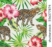 leopards with pink and red...   Shutterstock .eps vector #556377874