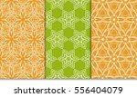 set of floral creative... | Shutterstock .eps vector #556404079