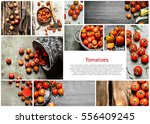 food collage of fresh tomato. | Shutterstock . vector #556409245