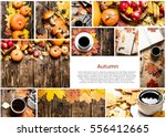food collage of autumn photos. | Shutterstock . vector #556412665