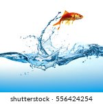 the fish is jumping | Shutterstock . vector #556424254