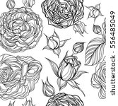 vector seamless pattern with... | Shutterstock .eps vector #556485049