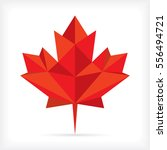 a low polygon style maple leaf... | Shutterstock .eps vector #556494721