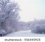 snowy road | Shutterstock . vector #556545925