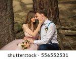wedding couple  beautiful bride ... | Shutterstock . vector #556552531