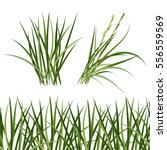 Green Grass  Horizontal...