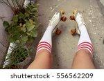 Close Up Of Legs Knee Socks...