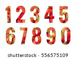 numbers set isolated on white... | Shutterstock . vector #556575109