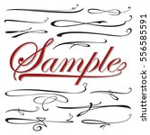 vector set of calligraphic...   Shutterstock .eps vector #556585591