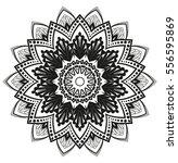 vector floral design  flower... | Shutterstock .eps vector #556595869