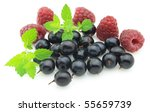 Berry with melissa - stock photo