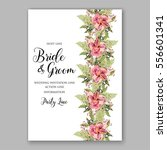 alstroemeria wedding invitation ... | Shutterstock .eps vector #556601341
