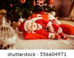 the small baby lies near... | Shutterstock . vector #556604971