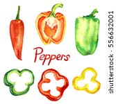 peppers set with slices ... | Shutterstock . vector #556632001