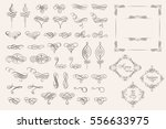 Set collection of vector calligraphic elements and page decorations.Can be used for decorate cards, invitations, create wallpapers, templates, border, decorate books and letters. Vector illustration. | Shutterstock vector #556633975