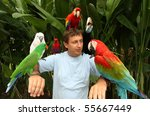 Man With Parrots Sitting On Th...