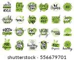 vector eco  organic  bio logos... | Shutterstock .eps vector #556679701