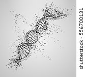 three dimensional dna molecule... | Shutterstock .eps vector #556700131