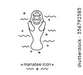 manatee icon isolated on white... | Shutterstock .eps vector #556792585